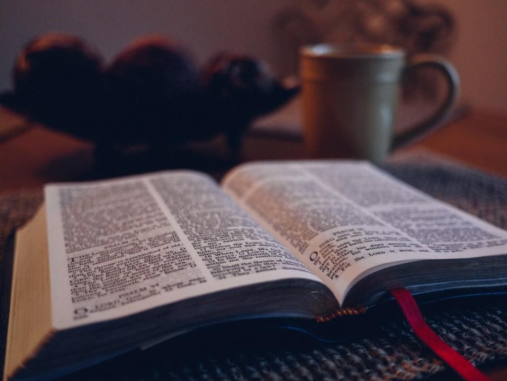 Umfangreiches und kostenloses Online-Wörterbuch von Pons